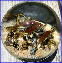 2009 Cathy Richardson Paperweight! Unbelievable 3 Trout River Bottom Scene