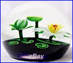 BEAUTIFUL Magnum STEVEN LUNDBERG Lotus POND Art Glass STUDIO Paperweight