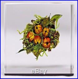 BEAUTIFUL Paul J. STANKARD Berry Cluster ART Glass PAPERWEIGHT Cube