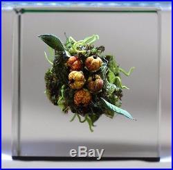 BEAUTIFUL Paul J. STANKARD Cluster of BERRIES Art Glass PAPERWEIGHT Cube