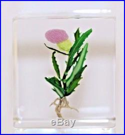 Beautiful BLOOMING THISTLE CUBE by PAUL STANKARD Art Glass PAPERWEIGHT