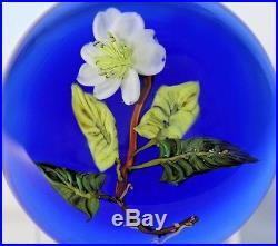 Beautiful PAUL STANKARD Experimental FLORAL & ROOTS Art Glass PAPERWEIGHT