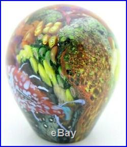 Beautiful PETER RAOS Pacific Tropical Fish & Reef Aquarium Art Glass PAPERWEIGHT