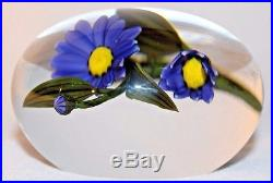 Chris Buzzini Marguerite Daisy Flowers Glass Paperweight Large