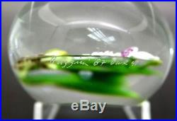 Chris Buzzini Orchid Flower Bouquet Art Glass Unique Paperweight, Apr 3Wx2.25H