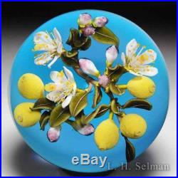 David Graeber 2017 lemon and blossom branch paperweight