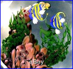 Facinating MAGNUM Studio LUNDBERG Fish AQUARIUM Sea Shell Art Glass PAPERWEIGHT