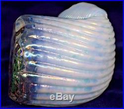 Facinating MAGNUM Studio LUNDBERG Shell AQUARIUM Art Glass PAPERWEIGHT
