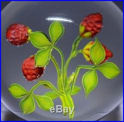 Gorgeous PAUL J. STANKARD Signed ART of WILD STRAWBERRIES Glass PAPERWEIGHT