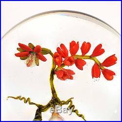 Jim DONOFRIO Spirit Flowers