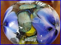 John Daniel LOTTON Studio Glass CASED Paperweight SIGNED 1995 3 Purple Flowers