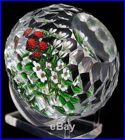 LARGE Lovely DELMO TARSITANO Honeycomb Cut SRAWBERRY Plant Art Glass PAPERWEIGHT