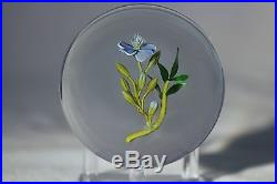 Large BEAUTIFUL Paul STANKARD Floral RARE GHOST ROOT SPIRIT Glass PAPERWEIGHT