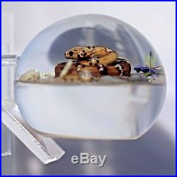 Large EXQUISITE Jim D'ONOFRIO RATTLESNAKE with CACTUS BLOOM Art Glass PAPERWEIGHT