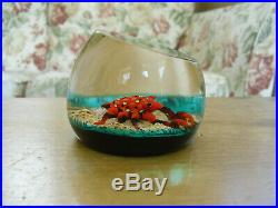 Limited Edition Caithness William Manson Seascape Paperweight(19/50) 3