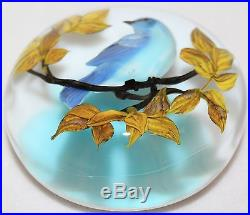 Magnificent RICK AYOTTE Tree Branch with BLUE JAY Bird ART Glass PAPERWEIGHT