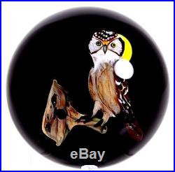 Magnificent RICK AYOTTE Watchful OWL Moon and TREE ART Glass PAPERWEIGHT