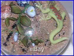 Mayauel Ward Glass Paperweight Red Spotted Green Lizard on Desert Sand 1994