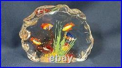 Murano Hand Blown 6 Fish Tank 8 Art Glass Signed Aldo Scagnetti 1950/60s Mint