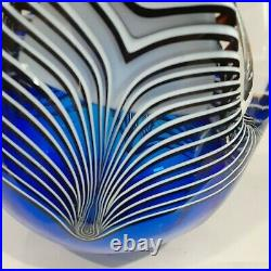 Mystery Artist Large Hand Blown Glass Teardrop Paperweight (Signed)