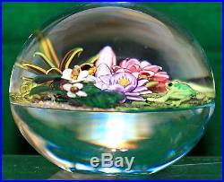 NEW! Cathy RICHARDSON Water's Edge Paperweight Studio Art Glass Paperweight