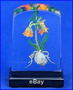Outstanding STANKARD Rare Form IMPERIAL LILY Experimental ART Glass PAPERWEIGHT