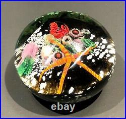 Peter Raos 1996 New Zealand Art glass paperweight UNDERWATER SCENE series MASTER