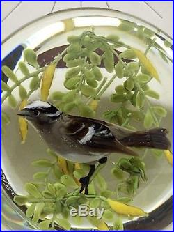 RARE In Box RICK AYOTTE Sparrow Glass PAPERWEIGHT Signed Numbered 9/50