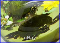 RICK AYOTTE Turtle Pond Life Magnum Art Glass LT ED 96 Paperweight, Apr 3.5Hx4W