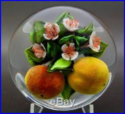 RICK AYOTTE White Flowers and Peach Fruits LT ED Glass Paperweight, Ap 2.25x3.5