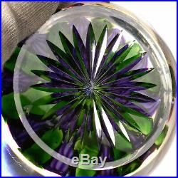 Rare Antique St. Louis Purple Dahlia