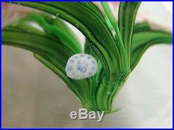 STEVE LUNDBERG Glass Paperweight 3 Pink Daffodils / Jonquils 1990 Signd w Cane