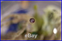 STUNNING Paul STANKARD Art Glass 7 ROOT SPIRITS over Clear Ground PAPERWEIGHT