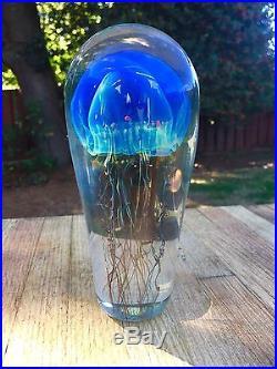 Stunning Satava Art Glass Hawaiian Moon Handblown Glass Jellyfish