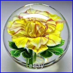 Salazar Lundberg Studio American Art Glass Lampwork Rose Flower Paperweight