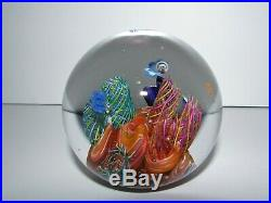 Signed Glass Eye Studio Caribbean Reef Art Glass Paperweight 741