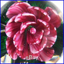 Signed JOE ZIMMERMAN Magnum Striped Pink/Red Rose