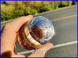 Signed Richard Satava hand blown 4.75 Gold Ruby Jellyfish Paperweight WOW