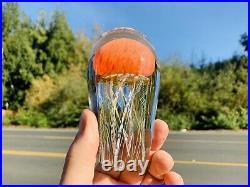 Signed Richard Satava hand blown 4.75 Pacific Coast Jellyfish Paperweight WOW