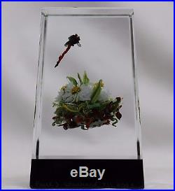 Spectacular PAUL J. STANKARD Tall BLOCK Art Glass PAPERWEIGHT Dragonfly & MASK