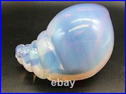 Vintage 1950's Murano Archimede Seguso blue pink opalescent glass conch seashell