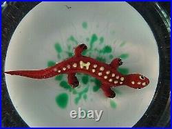 Vintage ROBERT HAMON Art Glass Faceted Lizard on Grass Paperweight Salamander